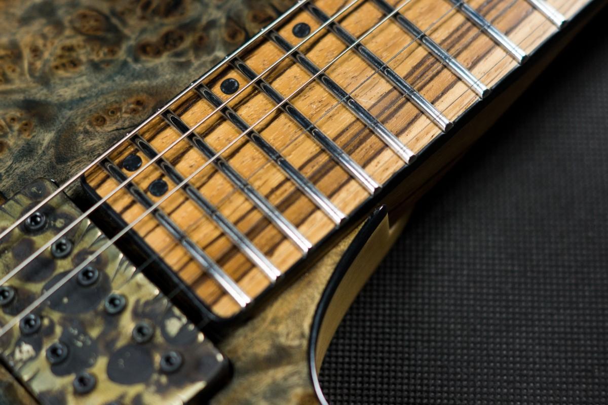 Neck Amp Fretboard Blackat